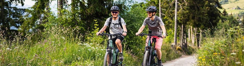 Vélo Électrique Urbain, Tout Chemin, Route et VTT - Bo Biclou